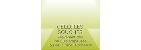 injections de cellules souches, réparation de tissus